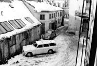 Vintergården på Kärrlandet 2